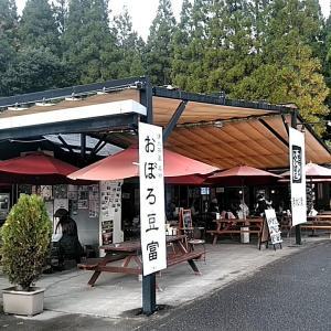またまた湧水茶屋へ(竹田市直入町)