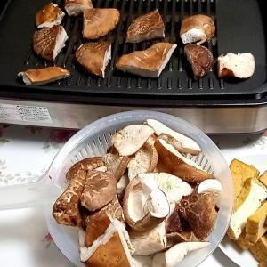 生椎茸メインの鉄板焼。