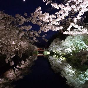 春爛漫に和む週末2021