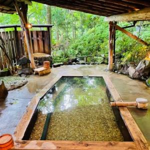東鳴子温泉 旅館 大沼 母里の湯にふたたび