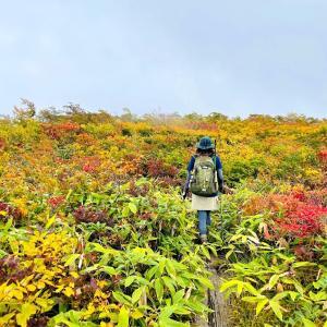 寒河江の最高峰 葉山を歩いてきました