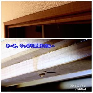 台風19号の爪痕
