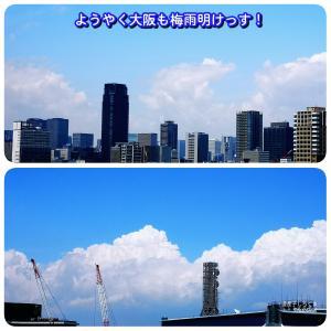 【大阪】梅雨明け…そしてズブ濡れ!