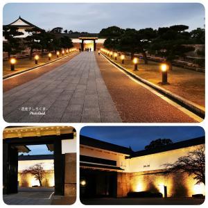 夜の大阪城!