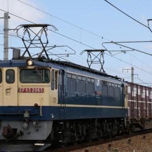 5087レ EF65 2065 いつもの原色PF サクラライン×3、がんばろう日本