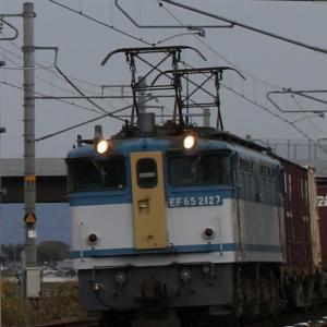 5087レ EF65 2127 カラシ参上! 北海道オホーツクタマネギコンテナ