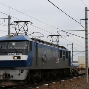 5071レ EF210-105 いつもの貨レ。 ネコロジー、DAINICHI×2