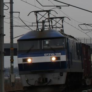 5085レ EF210-108 新塗装(簡略塗装)の桃太郎!