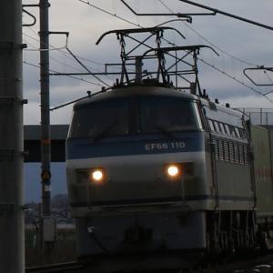 遅55レ EF66 110 福通レールExp. 角目サメ参上!