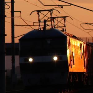 8053レ EF210-4 朝日に輝く貨レ CAI海コン、がんばろう日本