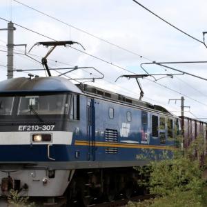 5071レ EF210-307 いつもの貨レ SUNTORY LOGISTICS