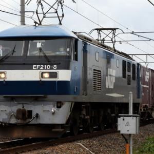 5050レ EF210-8 『カンガルーライナーNF64』 貴重な初期塗装桃太郎