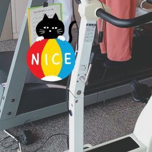 片麻痺 奮闘記 第65日目 ୨୧ *。