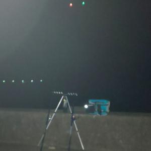 真夏の夜釣りのはずが・・・