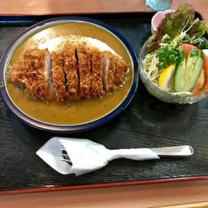 🚩外食日記(149)    宮崎ランチ   「かつれつ軒」⑤より、【かつカレー】‼️