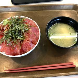 🚩外食日記(155)    宮崎ランチ   「水産会館食堂  渚」より、【まぐろ丼】‼️