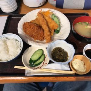 外食日記(30)  ランチ  宮崎   「おさかな料理」