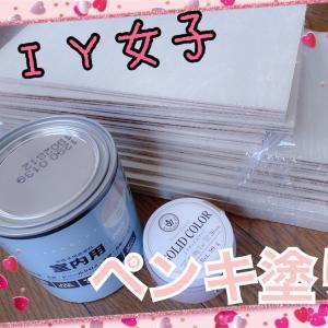 【DIY】棚作り開始!初のペンキ塗り!