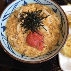 食べある記244 丸亀製麺(新横浜駅 うどん)