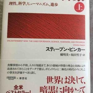 読書感想文65 21世紀の啓蒙(上)