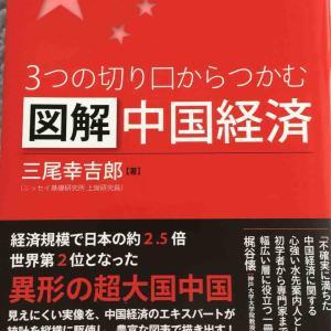 読書感想文78 3つの切り口からつかむ 図解中国経済