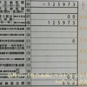 2019年度の確定申告で12万円も還付👛医療費控除を忘れずに!!