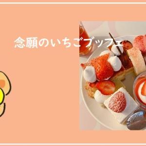 ホテルニューオータニ大阪でいちごビュッフェ満喫「2021年に念願叶う」