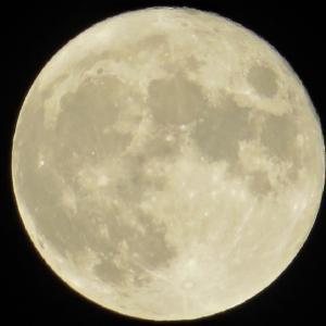 9月21日は中秋の名月