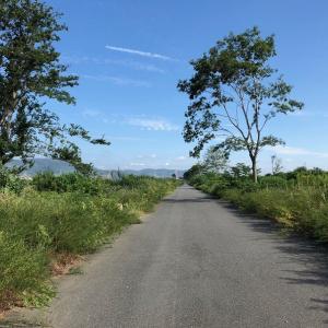 15km草と淀川の森