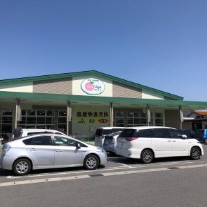 地元食材の宝庫、農産物直売所 「食べるJAんやまなし」に行ってきました