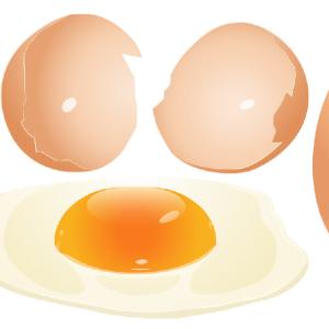 【葉酸を食品から】葉酸たまごって知ってますか?【妊婦さんの葉酸の摂り方】