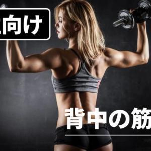 【女性向け】背中美人になる筋トレ3選!脂肪を落として綺麗な後ろ姿を目指そう!