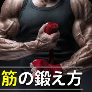 前腕筋の効果的な鍛え方・筋トレメニューをご紹介