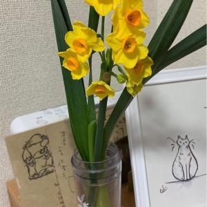 【清貧】花を飾る