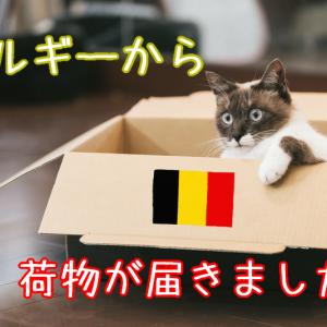 ベルギーから荷物が届きました2
