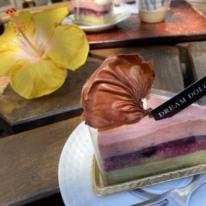 美味しいケーキとハイビスカス