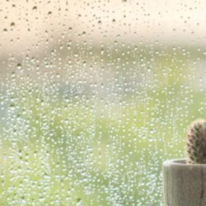 ひえ〜〜、朝から雨やばい・・・