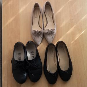 二足靴を手放しました 手持ちの靴の見直し