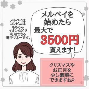 最大3500円て凄すぎない?と節約主婦は思う。