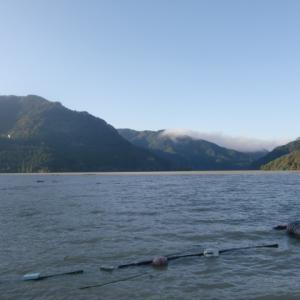 神流湖ワカサギ釣り2019part2
