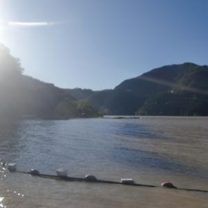 神流湖ワカサギ釣り2019part3