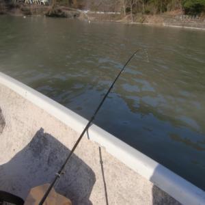 神流湖ワカサギ釣りpart5ボートっ