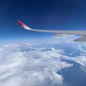 [難聴レポ]Go toで札幌市を観光しました1(飛行機編)