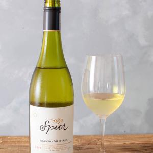 南アフリカ-白ワイン / Spier SAUVIGNON BLANC 2019