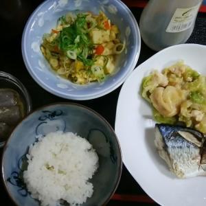 さば・カレー炒り豆腐・肉味噌キャベツ炒め