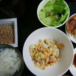 炒り豆腐がメイン