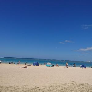 ハワイ アラモアナ ビーチパークでのんびり!