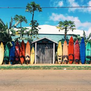 ハワイ移住計画:看護師&ナースプラクティショナー免許の取得