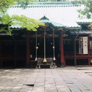 赤坂氷川神社 ~ここちぃぃ樹~