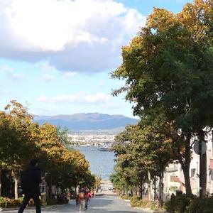 八幡坂、カトリック教会の秋景色散歩